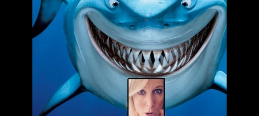 Don't Be Shark Bait! Anastasia's Hump Day Happenings